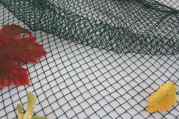 Teichnetz gegen Fischreiher